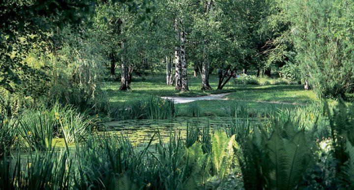 Vodeni ogled Botaničnega vrta